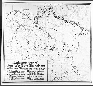 'Lebenskarte' des Weißen Storches