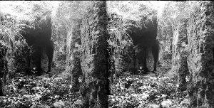 'Bärenkluft' in den Klippen des Ith-Nordecks.