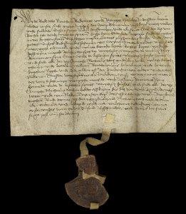 Urkunde vom 19. November 1507