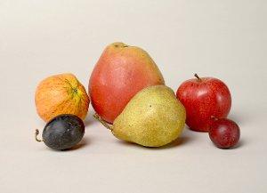 Obst-Modelle von Arnoldi